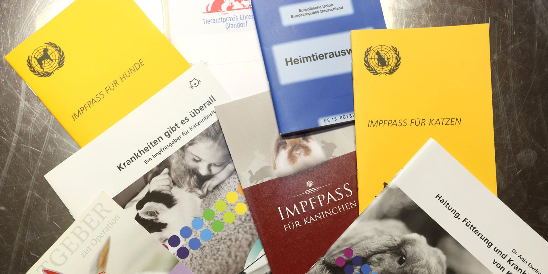 Prophylaxe Tierarztpraxis Ehrenbrink